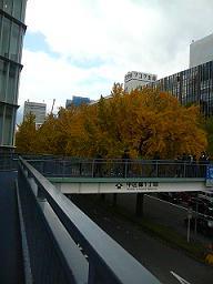 nagoya0811 (8).jpg