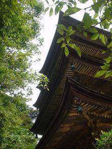 rurikouji (2).JPG